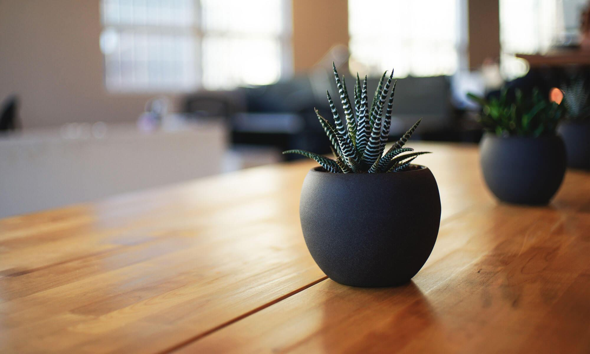 ブログ | 御茶ノ水 整体・頭痛なら頭痛専門【中村かえる整体院】